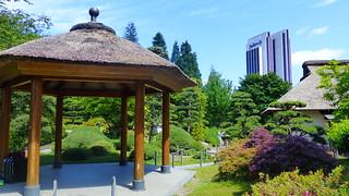 Japanese Pergoda