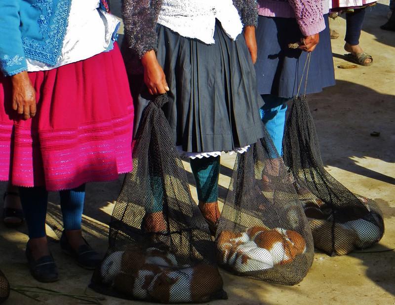 Carhuaz cuy market