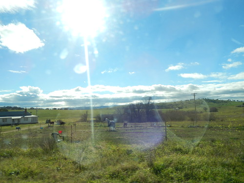 Drive back to Mudgee