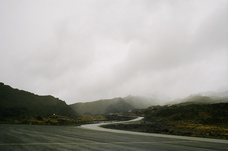 On the road - Northern Island New Zealand