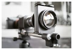 Vega 22UC 103/5.6 enlarging lens