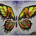 Butterphant by donbyatt