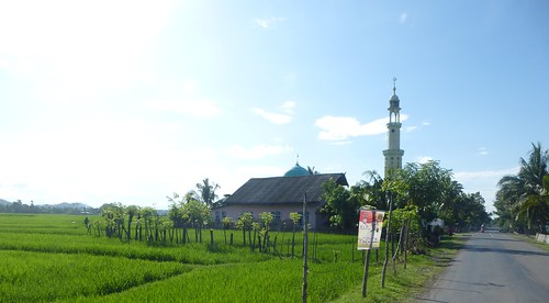 Sulawesi13-Bira-Bone-Kijang (35)