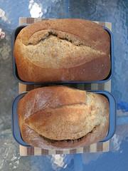 Whole-Wheat Sandwich Bread