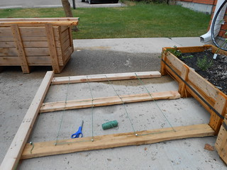 Working on the Backyard Garden (5)