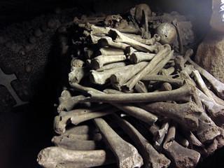 Pilas de huesos en cada rincón de las galerías catacumbas de parís - 9757026441 bf4f3c09f2 n - Catacumbas de París, donde se guarda la historia de la ciudad.