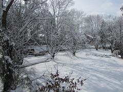 Thundersnow, January 27, 2011