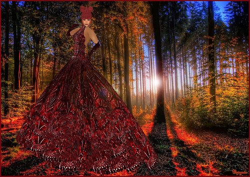 Lost in the Forest... by ♥Caprycia♥