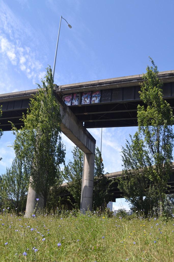 ELMS, Graffiti, Portland, Street Art