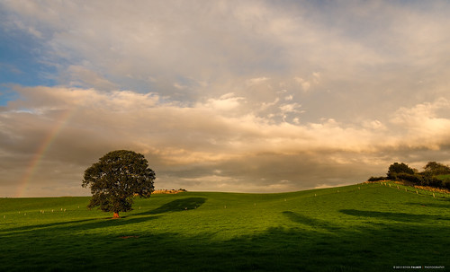 autumn light sunset england sky sunlight green nature grass oak nikon skies shadows seasons sundown shade staffordshire whitmore newcastleunderlyme gbr threeshiresphotographers d800e nikond800e