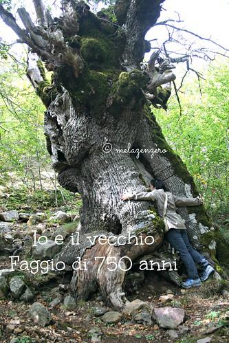 io e nonno Faggio