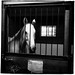 Derrière les barreaux/Behind bars by bob august