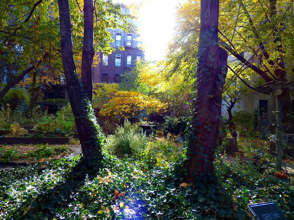 Green Oasis Garden