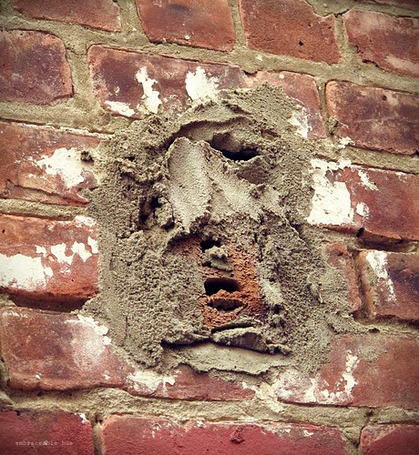 Inanimate Portraits - Face in the Brick