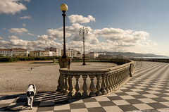 Photo locations ideas at Terrazza Mascagni, tips for the best photo ...