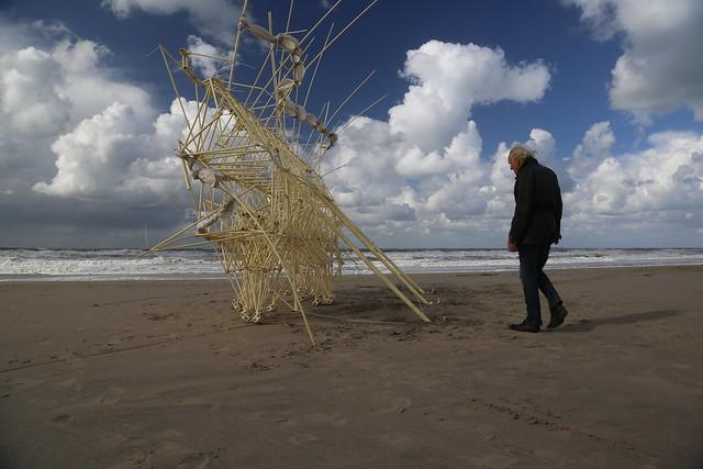 uros kirn 5 apodiacula at silent beach 2013