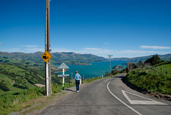 Looking Towards Akaroa