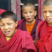 P1020763 Young monks at Thiksey. Ladakh. Himalayas.  PS © by peteshep