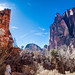 Zion Canyon Dreams by Jay Abramson