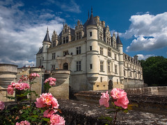 Châteaux, Castles, & Cathedrals