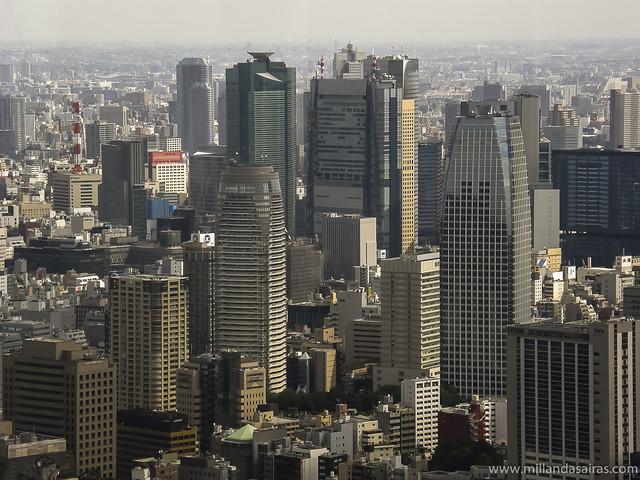 Vistas de Tokio desde Torre Mori