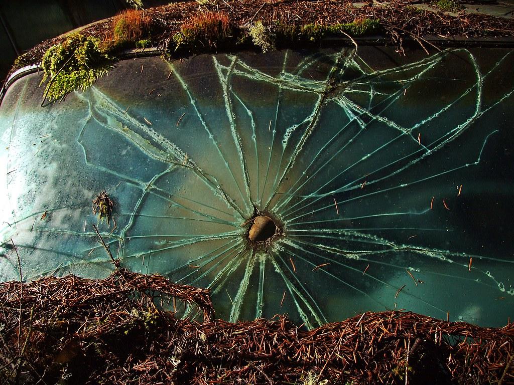 Windshield - Trust Salvage - Auburn WA