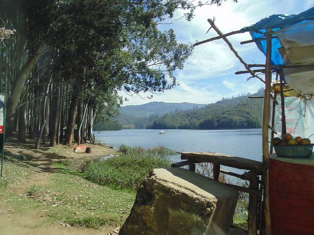 mattupetty dam, Munnar, Kerala