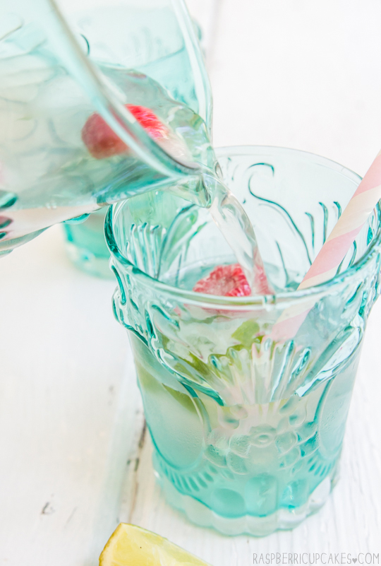 Rhubarb & Ginger Cordial with Mint & Raspberry Ice