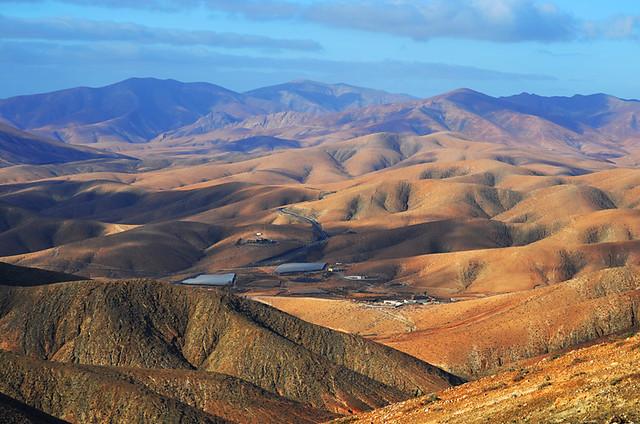 An amber landscape, Fuerteventura
