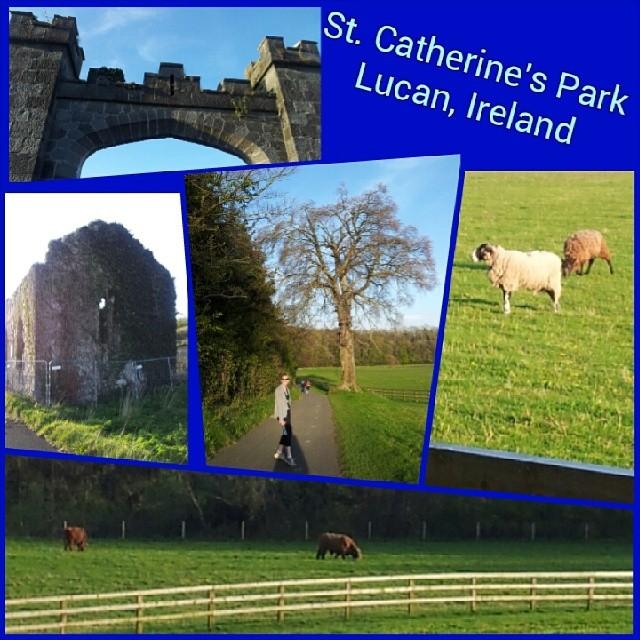 St. Catherine's Park near Lucan.