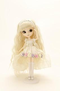 romaliceflower