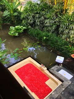 Flora bath
