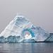 Iceberg with Cameo by TJMORTON1