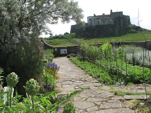 Artichokes and castle