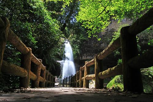 forest landscape waterfall path taiwan 南投 台灣 taki 滝 瀑布 nantou 杉林溪 sunlinksea canonefs1022mm 步道 zhushan 竹山 chushan 森林步道 たき 松瀧岩 canoneos600d songlongrockwaterfall