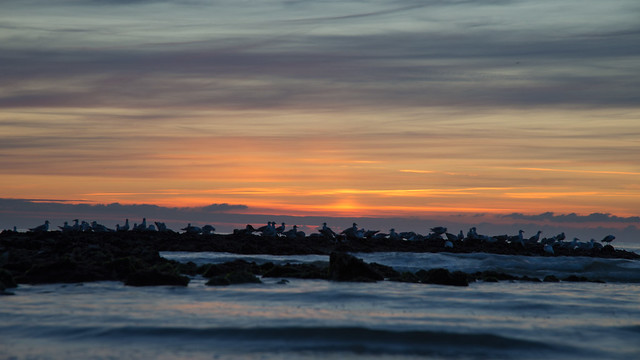 sunset, Sony SLT-A99V, Tamron 80-300mm F3.5-6.3