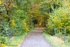 Herbst erleben...