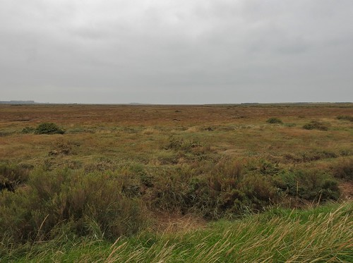 RSPB Titchwell Marsh in North Norfolk, England - October 2016