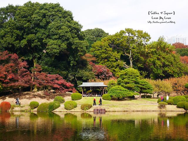 日本東京自由行新宿御苑庭園景點 (18)