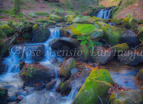 Parque Natural de Gorbeia #DePaseoConLarri #Flickr -2857