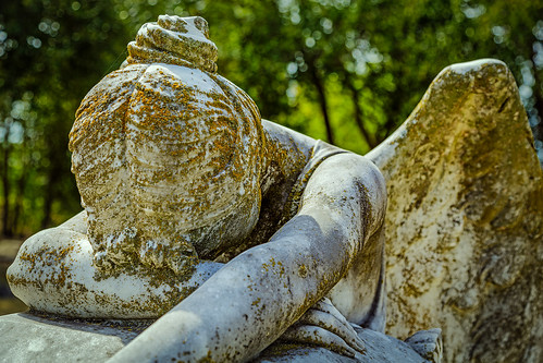 angel angelofgrief burialground cemetery davila grave gravestone graveyard grief holycross memorial monument sculpture sorrow statue tombstone weeping waco texas unitedstates us
