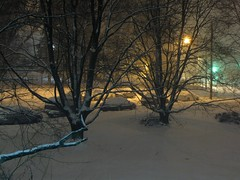 Snowpocalypse, December 19-20, 2009
