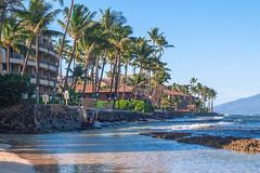 Maui Day 3 2013-16.jpg