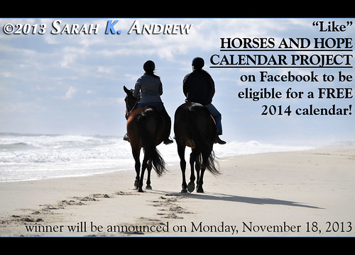 """like"" the Horses and Hope Calendar Project page on Facebook for a chance to win a FREE 2014 calendar!"