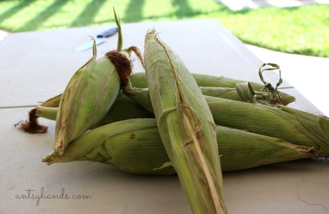 Mexican Corn || AntsyHands.com
