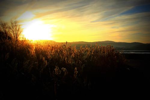 sunrise goldenhour northwales afonconwy riverconwy glanconwy ef28135mmf3556isusm conwyestuary canoneos550d ashperkins