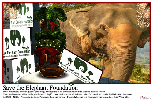 Save the Elephant Foundation Holiday Creation 100% proceeds to the goal of sponsoring 35 Elephants.