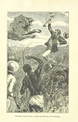 """British Library digitised image from page 8 of """"Stirring Adventure in African Travel, etc [With illustrations.]"""""""