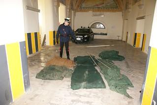 carabinieri rubano olive