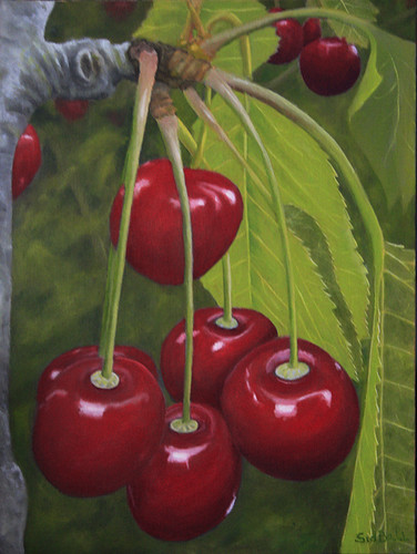 cherries by Sid's art